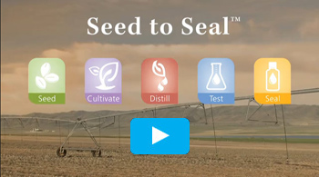 Young Living Seed to Seal video